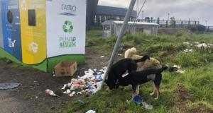 Castro: preocupación por mala utilización de los puntos limpios.