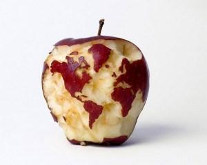 maçã terra