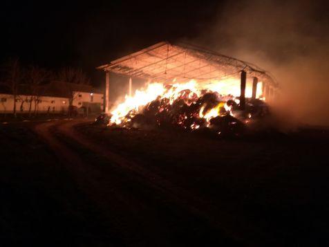 incendiu herghelie 1