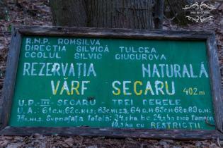 Pădurea Topolog