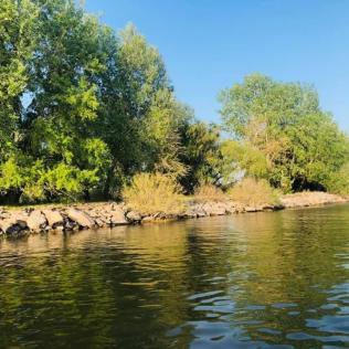 Delta Dunarii Asociatia Turism Delta Dunarii 4