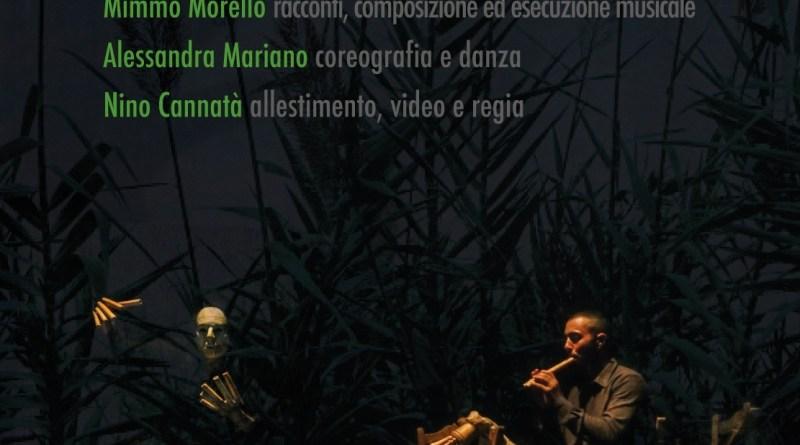 Arundo donax - Suoni di Canna