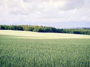 χωράφι τοπίο αγρότης γη