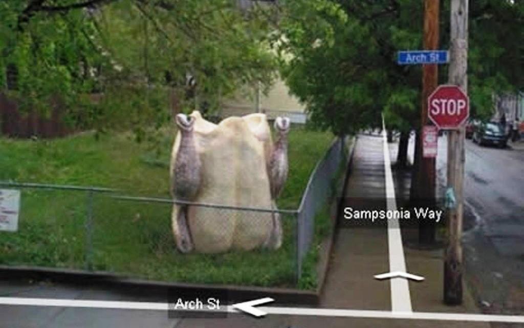 Google street e il tacchino in giardino
