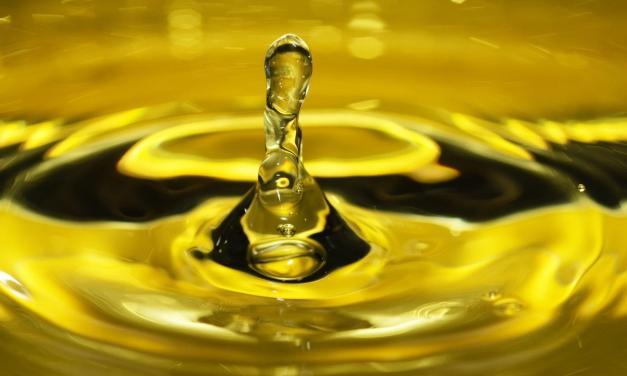 E' siciliano l'olio d'oliva più antico del mondo