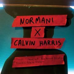 """Nornanni e Calvin Harris: """"Checklist""""  feat. Wizkid"""