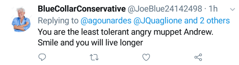 """Blue Collar Conservative Tweeted: """"You are the least tolerant angry muppet Andrew. Smile and you will live longer"""" replying to @agounardes @JQuaglione and 2 others"""