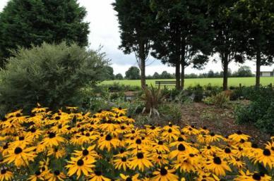 DAY 56 - Aug 25th - Roxeth Park by Harrow Council