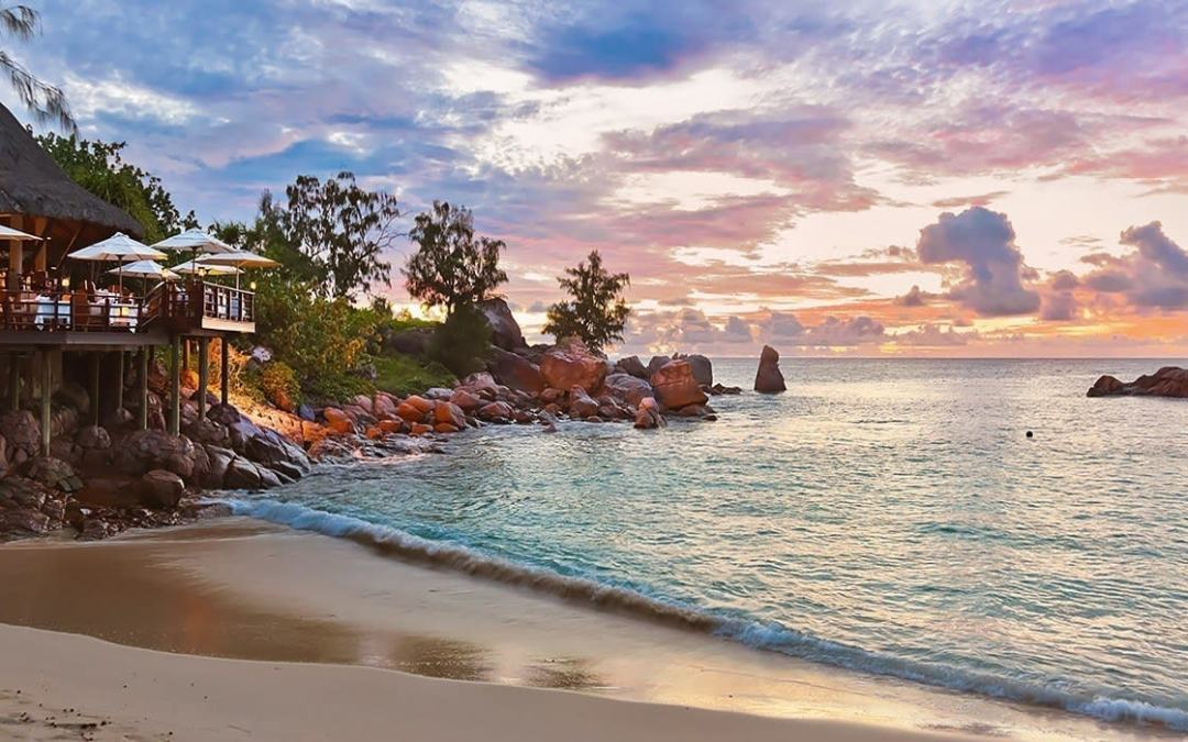 100,000 Trees to Be Planted in Seychelles By End December