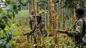 Congo Blames Rwanda's Hutu Rebels for Italian Envoy's Death