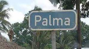 [LISTEN] Palma in Mozambique Conducive for Terrorist Attack, Could South Africa be Next?