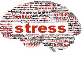 Coping With Stress In A Demanding World – Mufti Yusuf Moosagie
