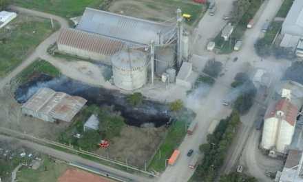 Incendio de pastizales en Las Rosas