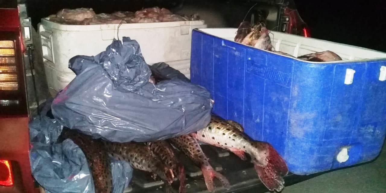 Lo multaron por llevar 130 Kg. de pescados sin licencia habilitante