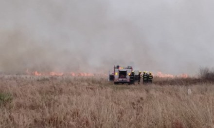 Incendio de pastizales pegado al barrio oeste