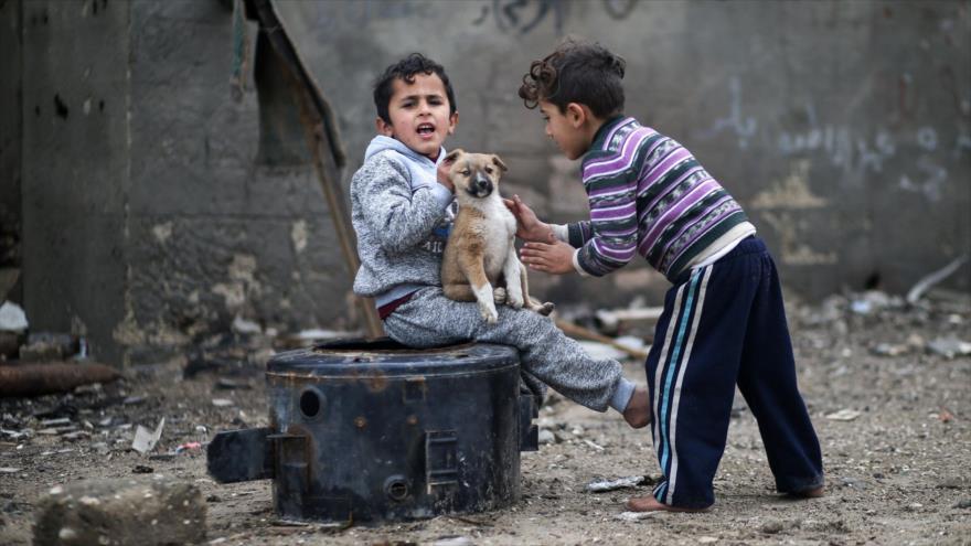 ONU alerta del 'colapso total' de Gaza por crímenes de Israel - palestina