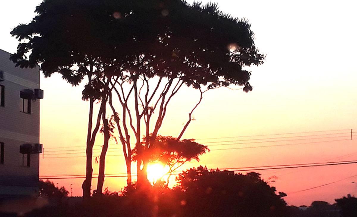 Semana com tempo seco e sol