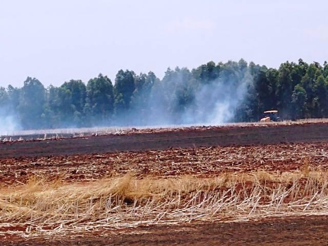 Bombeiros combatem incêndio em vegetação próximo a São Nicolau