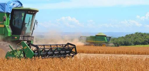 Presidente da Coopatrigo esclarece dúvidas quanto aos contratos da safra de soja