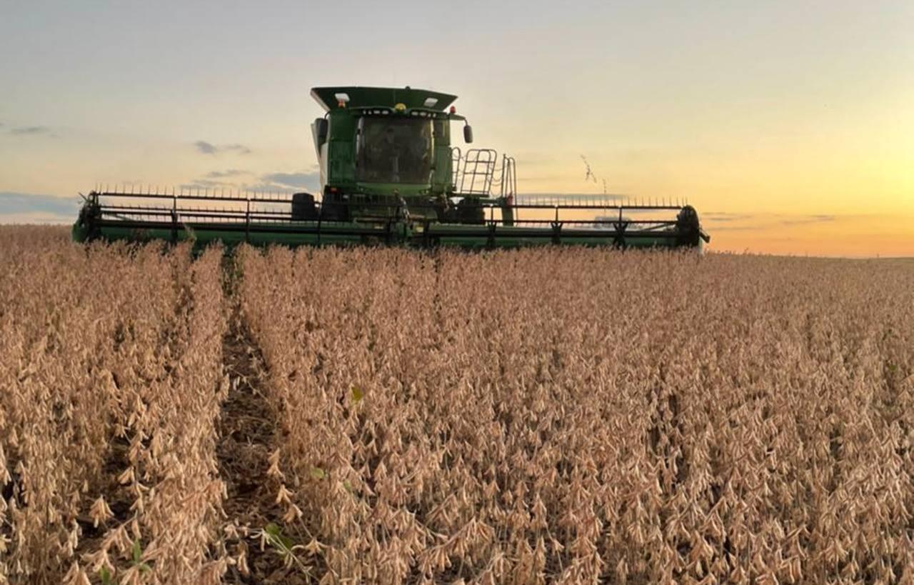 Custos das culturas de soja e milho sobem acima de 25% na próxima safra