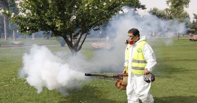 """Virginia Torres: """"Lo que preocupa del dengue es que no hay vacuna, pero también que la gente lo ha subestimado"""""""