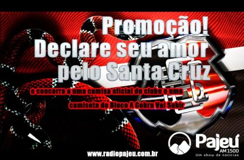 Promoção: declare seu amor pelo Santa Cruz e ganhe uma camisa oficial do clube