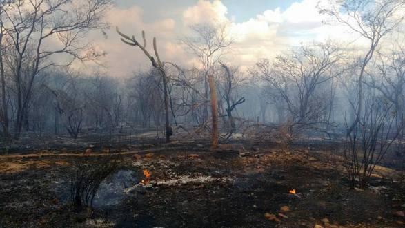 Fogo voltou a atingir zona rural de Ingazeira