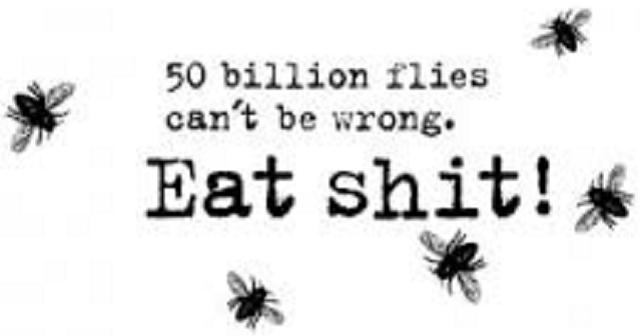 ¿Pueden equivocarse tantas moscas?