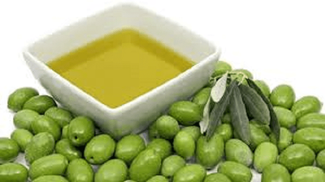 El aceite de oliva, en judeoespañol, desde el CIDICSEF de Buenos Aires