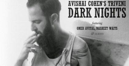 avishai cohen dark nights
