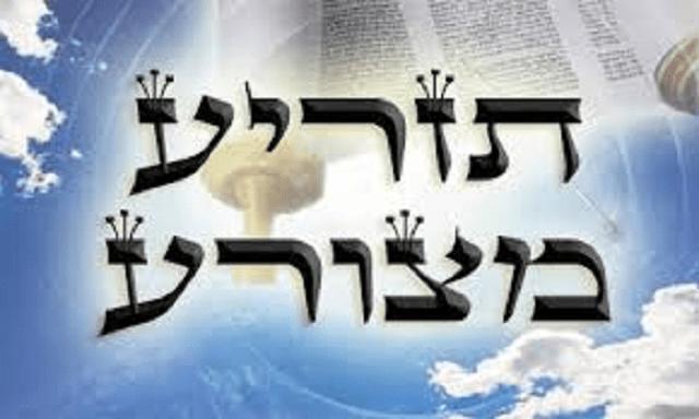 Tazría – Metzorá, con el rabino Moshe Bendahan