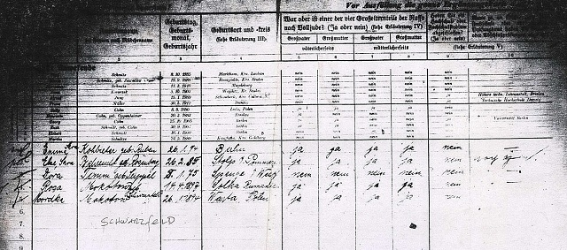 The Leo Baeck Institute, and the 1939 German Minority Census
