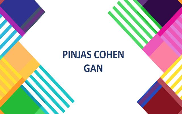Pinjas Cohén Gan, teoría del arte relativo