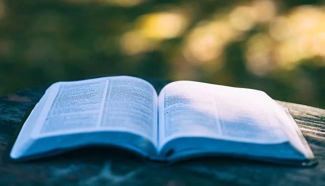 Lecturas recomendadas en torno a la Shoá