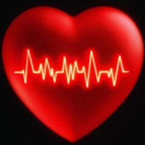 Predazione degli organi: interviene Nerina Negrello