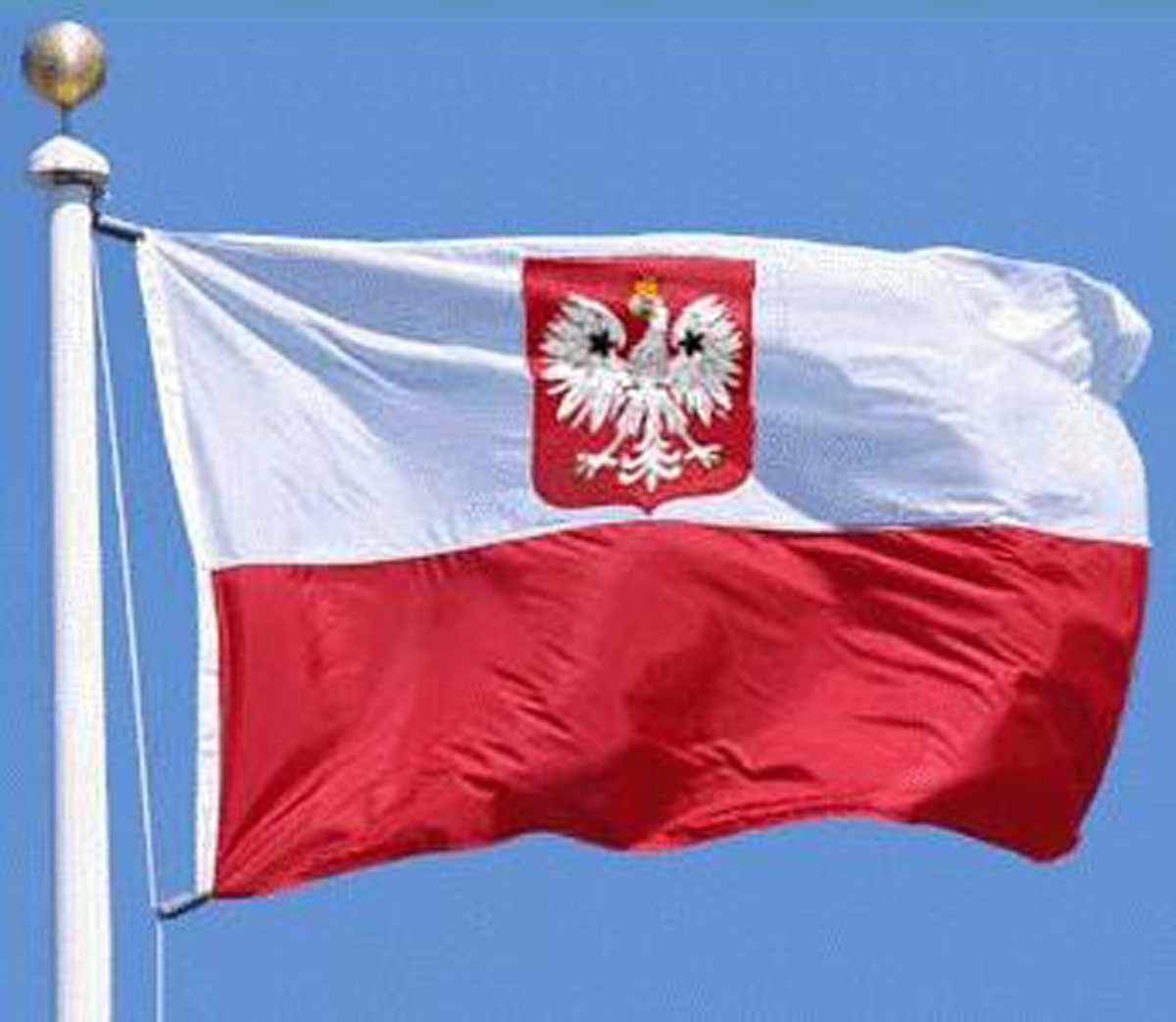 Graphics Flag of Poland Polish Flag Wallpapers (2)
