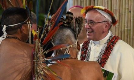 Il prof. M. D'Amico commenta l'Instrumentum Laboris del Sinodo Amazzonico (3)