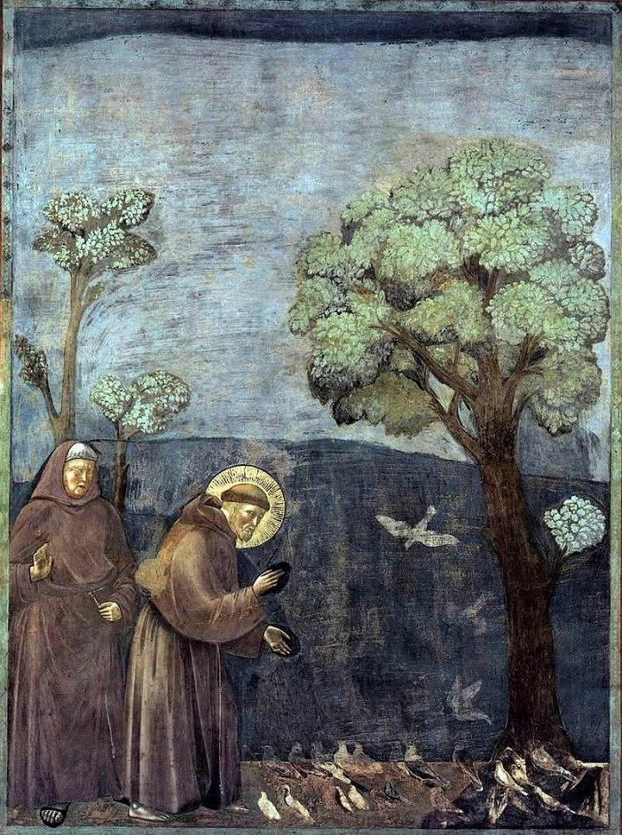 Per una visione cattolica dell'ecologia