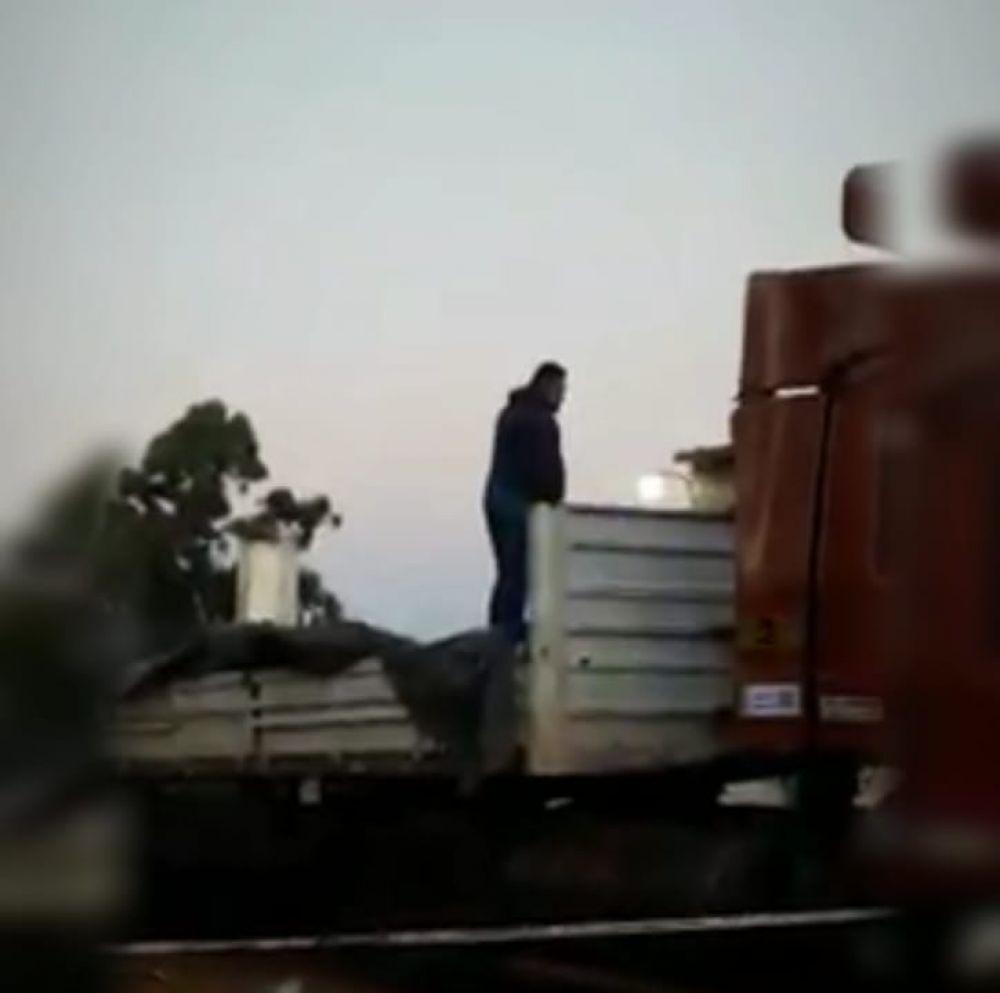 foto: En megaoperativo, la policía detuvo un camión con 7 toneladas de droga