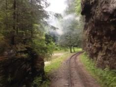 Valea_Vaserului11
