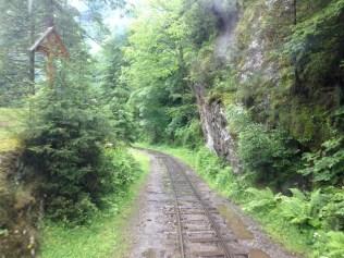 Valea_Vaserului12