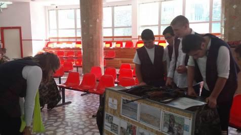 Ziua Armatei in scoli la Timisoara (1)