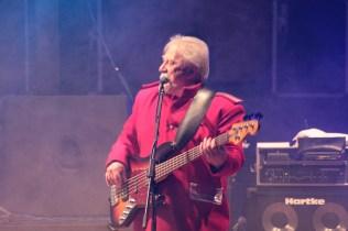 pasarea rock tm (60)