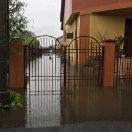 inundatii sacalaz 28.06 (10)