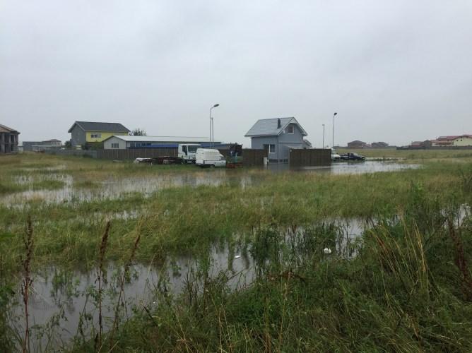 inundatii sacalaz 28.06 (13)