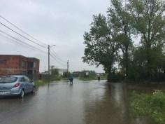 inundatii sacalaz 28.06 (4)