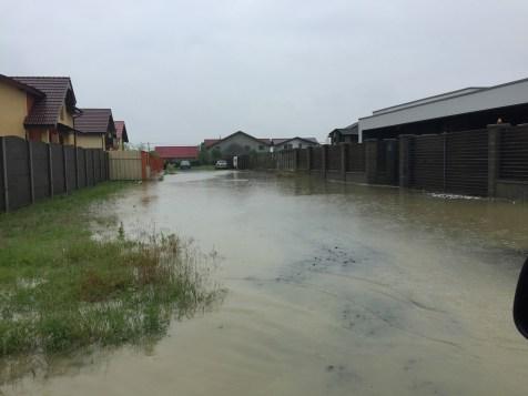 inundatii sacalaz 28.06 (7)