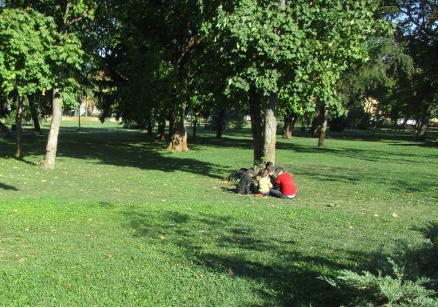 migranti in parcurile din Timisoara (1)