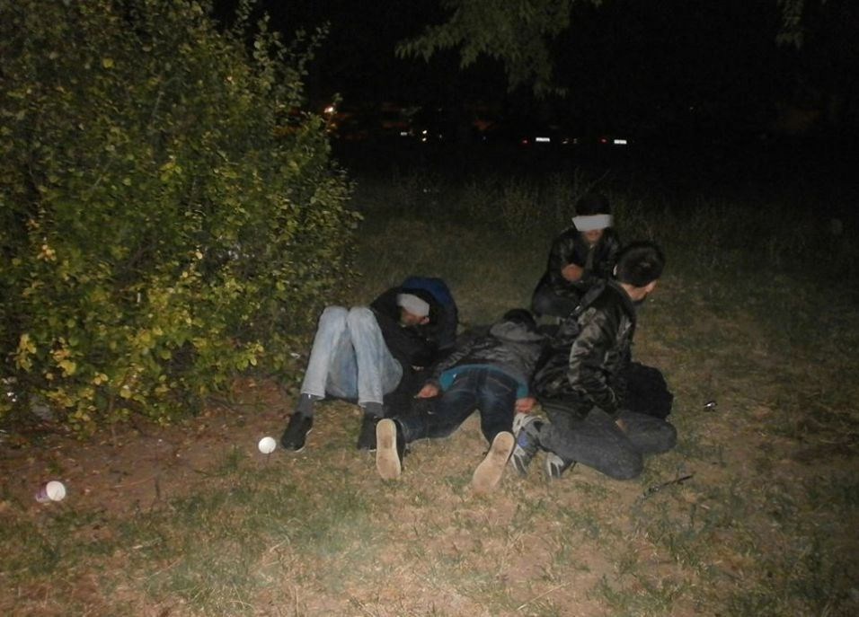 migranti in parcurile din Timisoara (4)