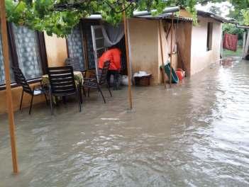 inundatii sannicolau mare (2)